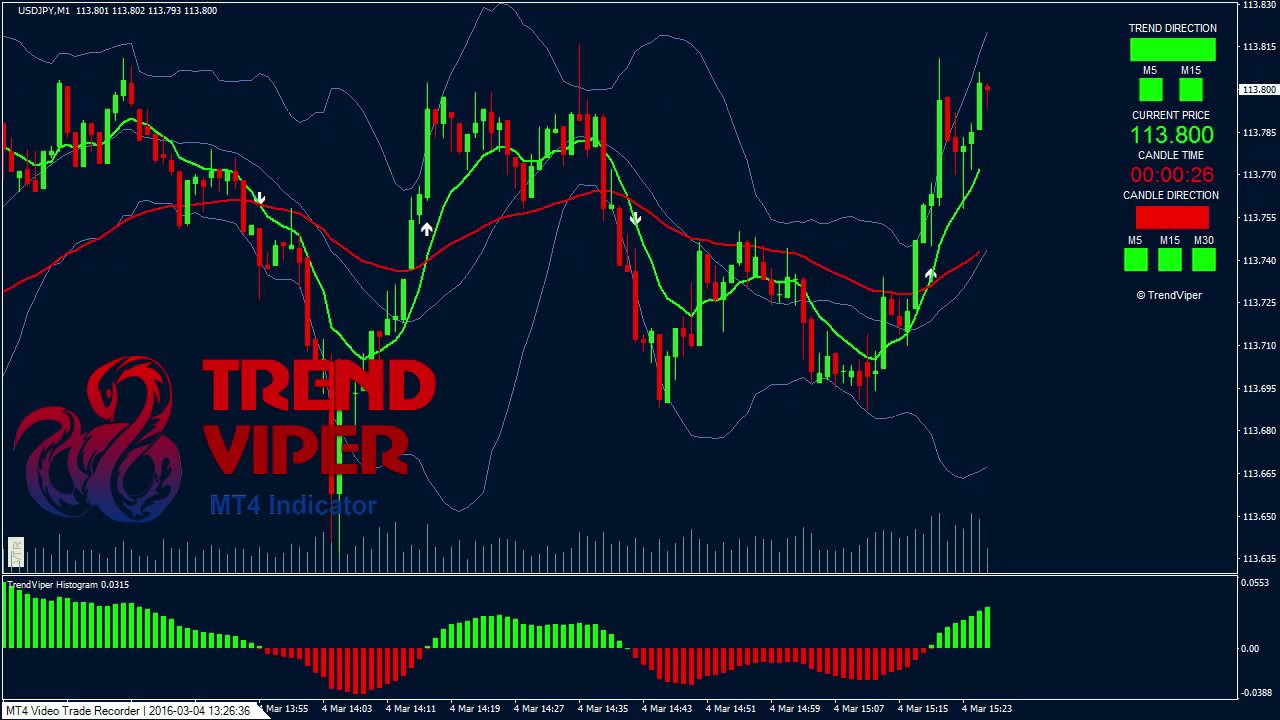 Binary Choices Buying and selling Indicators Reside Overview